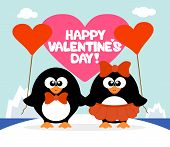Valentine's Day  Background With Penguins