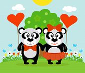 Valentine's day  background with pandas