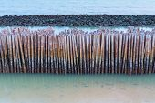 Bamboo fence protect sandbank from sea wave