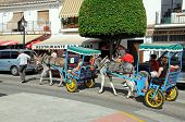 Donkeys with carriages, Mijas.