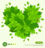 Spring design with green leaves formed heart.