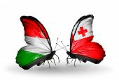 Two Butterflies With Flags On Wings As Symbol Of Relations Hungary And Tonga