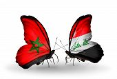 Two Butterflies With Flags On Wings As Symbol Of Relations Morocco And Iraq
