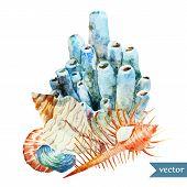 watercolor, vector, sea, coral, shell2