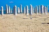Closed umbrellas in an empty beach