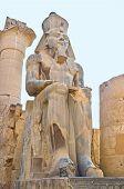 The Egyptian Pharaoh