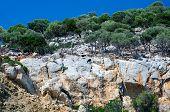 Rocky Shore Of Island Turtles (kelifos), Greece