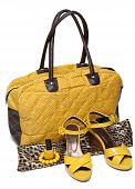 Feminine Bag And Pair Yellow Feminine Loafers