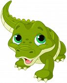 picture of alligator baby  - Illustration of very cute baby alligator - JPG