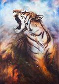 Tiger, portrait of a bengal tiger