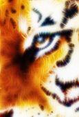 Tiger Ornament  Fractal Background