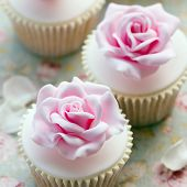 stock photo of sugarpaste  - Rose cupcakes for a wedding - JPG