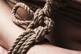 image of sadism  - Detail of rope node on japanese bondage takate kote  - JPG