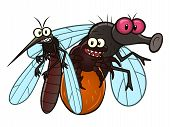 stock photo of summer insects  - Cartoon mosquito - JPG