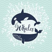 picture of whale-tail  - Stunning whale card - JPG