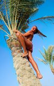 stock photo of tarzan  - She climbs up on the date palm - JPG