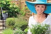 stock photo of fifties  - Smiling fifty year old lady gardener outside in the garden holding a pack of lobelia - JPG