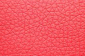 Rose  leatherette texture