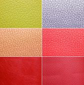Colorful leather patterns