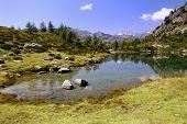 Summer Alpine lake view