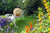 pic of lobelia  - Peacuful summer garden with a straw hat and a white bench - JPG