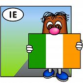 'Brownie' Showing The Flag Of Ireland