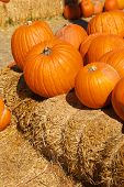 Bright Orange Pumpkins Stacked On Hay Bales