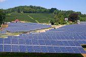 Solar Farm (h)