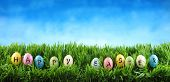 Bright colorful Easter eggs saying Happy Easter on green grass with flowers against blue sky poster