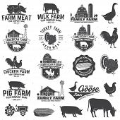 American Farm Badge Or Label. Vector Illustration. Vintage Typography Design With Chicken, Pig, Turk poster