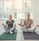Portrait Of Peaceful Old Man And Woman Sitting In Lotus Position On Carpets With Eyes Closed poster