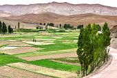 Landscape View Of The Fields Of High Atlas Mountains, Morocco poster