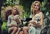 Two cute blondie hugging puppies