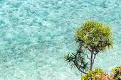 Top view of transparent shallow turquoise ocean sea water surface and rock at andaman sea indian oce poster