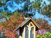 Fall Day And A Birdfeeder