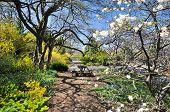 Spring landscape Montreal's botanical garden, Quebec, Canada