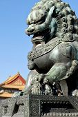 Bronze Lions On The Background Of The Buildings Of The Imperial Palace. The Imperial Palace In Beiji poster