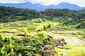 picture of luzon  - Village in Cordillera mountains Luzon Philippines in the day - JPG