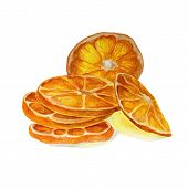 Fruit Chips, Sun-dried Orange, Dry Slices Of Lemon, Orange, Lime, Grapefruit In Sunlight. Watercolor poster