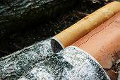 Birch Trunk Closeup Processing Of Lumber Bark Removal Drying. Birch Trunk Bark White Black poster