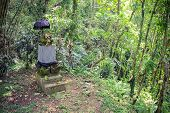 Traditional Spirit House From Buddhist Cosmology In Forest, Thailand poster