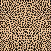 picture of cheetah  - illustration pattern background leopard skins and heads - JPG