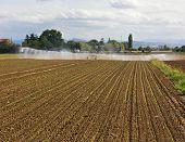 Field Irrigation