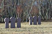 Crosses In Graveyard.