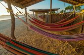 Colorful Beach Hammocks