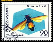 Vintage  Postage Stamp. Insect Ong Bove.
