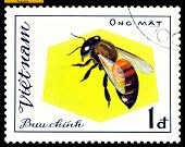 Vintage  Postage Stamp. Insect Ong Mat.