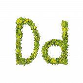 Leaf Font D