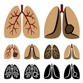 stock photo of smoker  - Vector human lung cancer icons - JPG