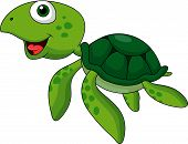 stock photo of terrapin turtle  - Vector illustration of Cute sea turtle cartoon isolated on white - JPG